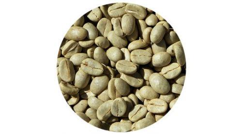 pure green coffee bean plus trial