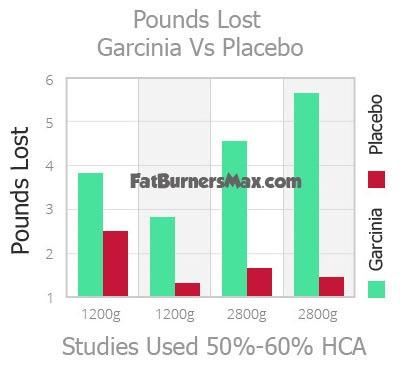 Garcinia Cambogia Studies