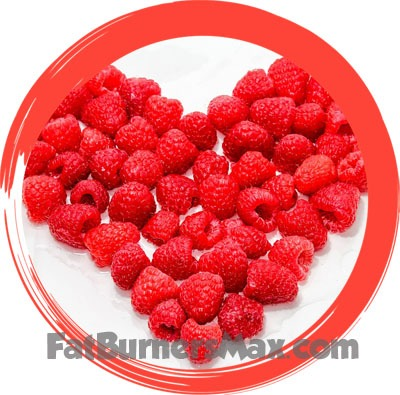 Raspberry Ketones Science