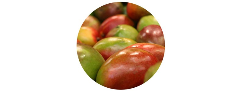 African Mango Intro