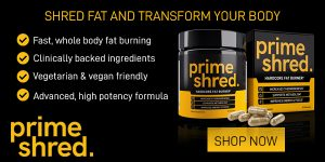 PrimeShred Results